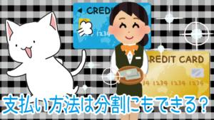 恋肌の支払い方法はクレジットカードやローンで分割にもできる?