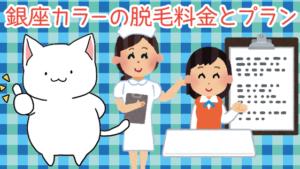 銀座カラーの脱毛料金とプランの解説!